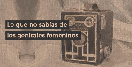 genitales femeninos